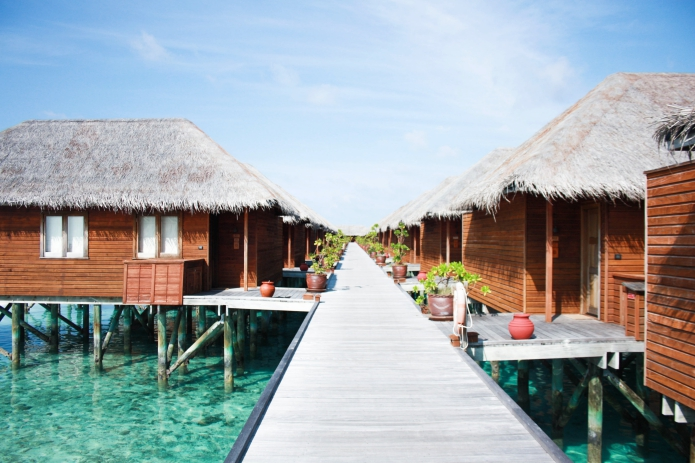 chicchoolee-maldives10
