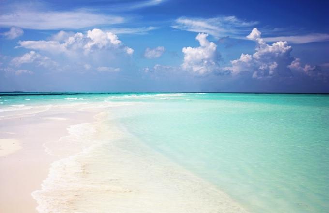 chicchoolee-maldives