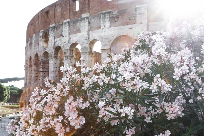 Kosten Urlaub Rom