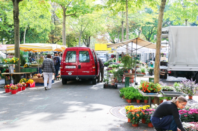 Zürich-Schweiz-Jahrmarkt-Blumenmarkt-Markt-Stadt