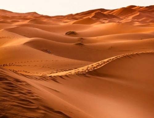 Sicherheit in Marokko – Wie sicher ist eine Reise nach Marokko?