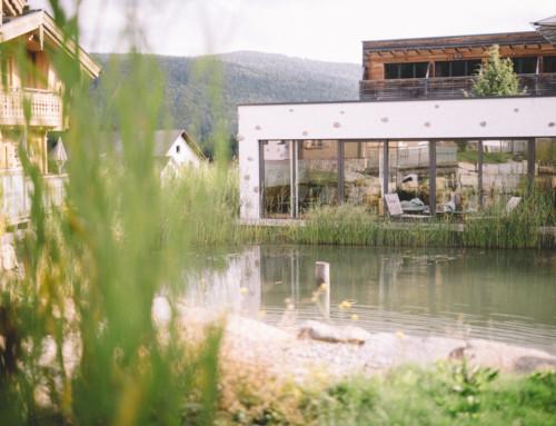 Inns Holz – Chaletdorf im Böhmerwald