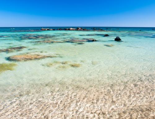 Elafonisi Strand Kreta – Bilder & Wissenswertes
