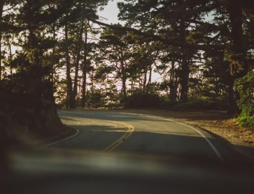 Reisen als Statussymbol – Generation #Wanderlust