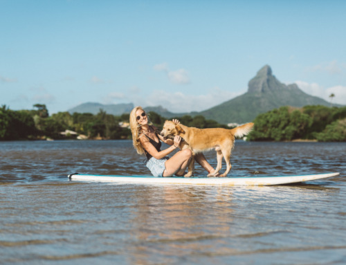 Top 20 Aktivitäten und Sehenswürdigkeiten auf Mauritius
